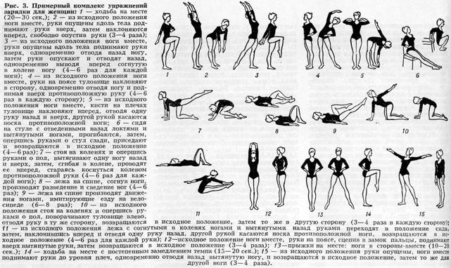 гимнастическая зарядка в картинках